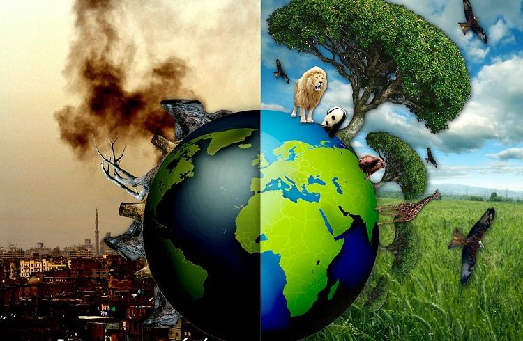 Dünyayı Kurtarmada Küçük de Olsa Rol Oynayabilirsiniz!