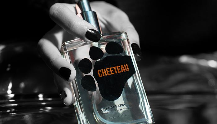 Cheetos Koleksiyonunda Hangi Materyaller Kullanıldı?