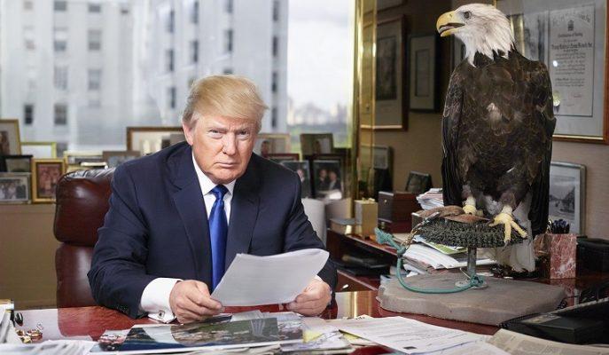 Başkan Donald Trump'ın Ekonomi Ekibi ile Tanışın!