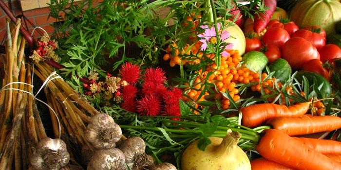 Mevsim Sebze ve Meyvelerini Tercih Edin!