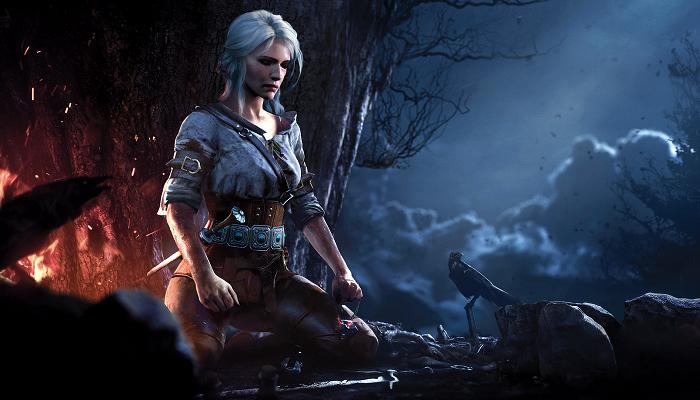 En İyi RPG Oyunu: The Witcher 3: Wild Hunt - Blood and Wine