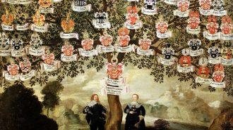 Soy Ağacı Nedir? Nasıl Çıkarılır ve Yapılır?