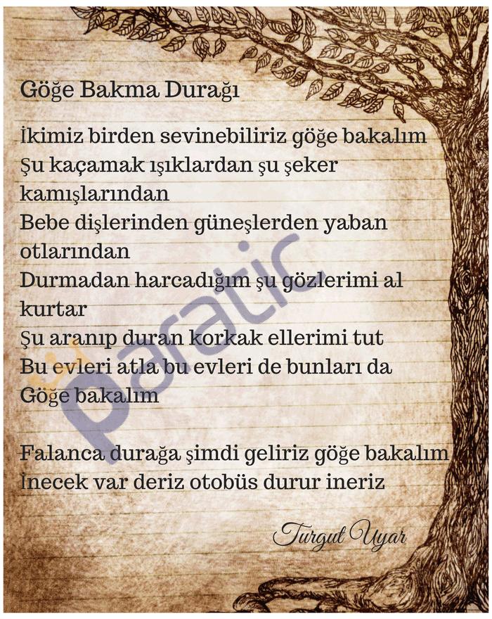 Türk Edebiyatının 20 ünlü şairi Ve En Sevilen şiirleri Paratic