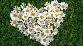 Ne Kadar Platonik Aşıksın? 10 Soruda Cevabını Veriyoruz!