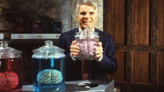Zeka Geliştirme Yöntemleri Nelerdir? Hangi Egzersizler Beyni Geliştirir?