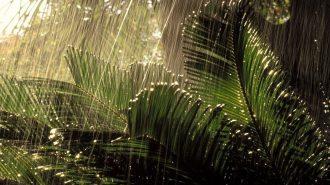 Muson Yağmurlarının Hızlandırılmış Çekimde Etkileyici Görüntüleri