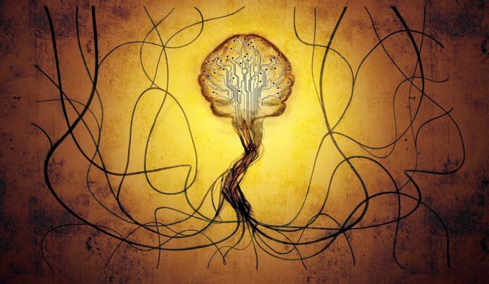 Zeka Testi: Bakalım Görsel Hafızan ve Dikkat Mekanizman Nasıl Çalışıyor?