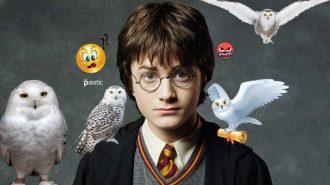 Harry Potter Baykuşların Neslini mi Tüketiyor?