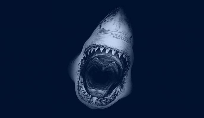 Birbirinden Korkunç Görüntülere Sahip 5 Köpek Balığı Türü