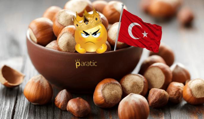 Fındık Üretiminde Lider Olan Türkiye'nin Tahtı Sallantıda!