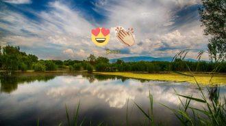 Hayallerinin Peşinden Koşan Çift Bataklıktan Cennet Yarattı!