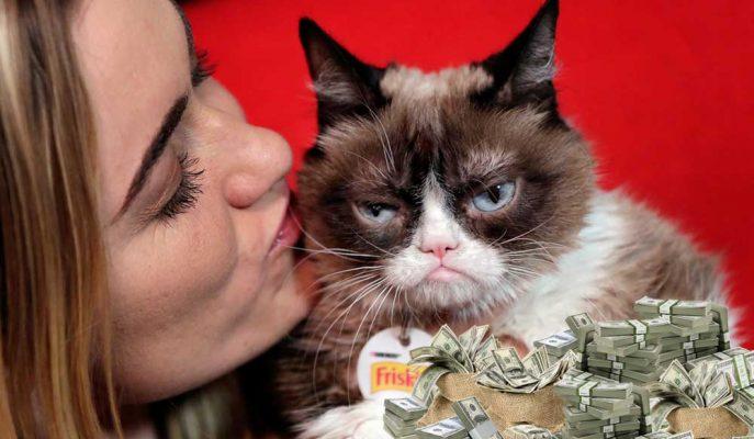 Grumpy Cat Kazandığı 710 Bin Dolarlık Tazminat Davasıyla Sahibini İhya Etti!