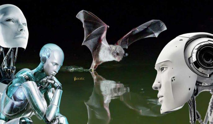 Robotlara Birbirleriyle Konuşmayı Öğretmek için Balık Yiyen Yarasalar Araştırılıyor