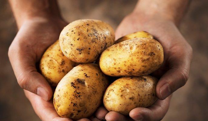 Patateste İthalat Hamlesi İşe Yaradı, Fiyatlar 2 Liraya Geriledi