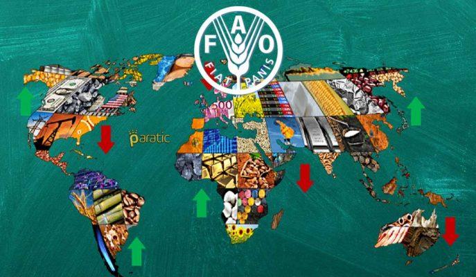 Haziran'da Küresel Gıda Fiyatları Endeksi Düşüşe İşaret Etti