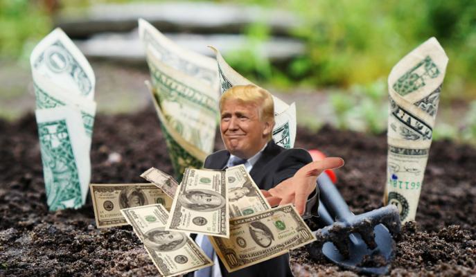 Ticaret Savaşından Etkilenen ABD'li Çiftçilere 6 Milyar Dolarlık Destek Yolda!