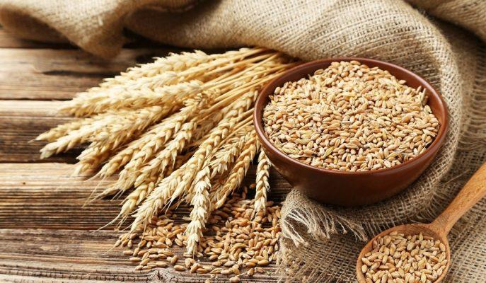 Buğday Stoklarının Küresel Çapta Tükenmesiyle TMO Aldığı Önlemleri Duyurdu