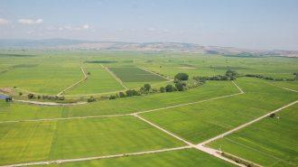 Hazine Arazileri Yerli Üretimi Artırmak için Uygun Koşullarda Vatandaşa Kiraya Verilecek