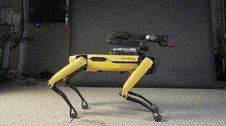 Boston Dynamics'in Teknoloji Harikası Robot Köpeği Spot Dans Konusunda da Başarılı!