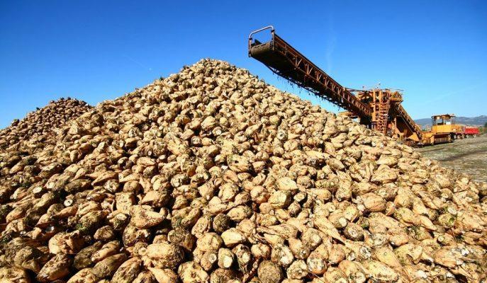 Özelleştirilmesi ile Büyük Tepki Toplayan Şeker Fabrikalarının Arsaları da Satılıyor