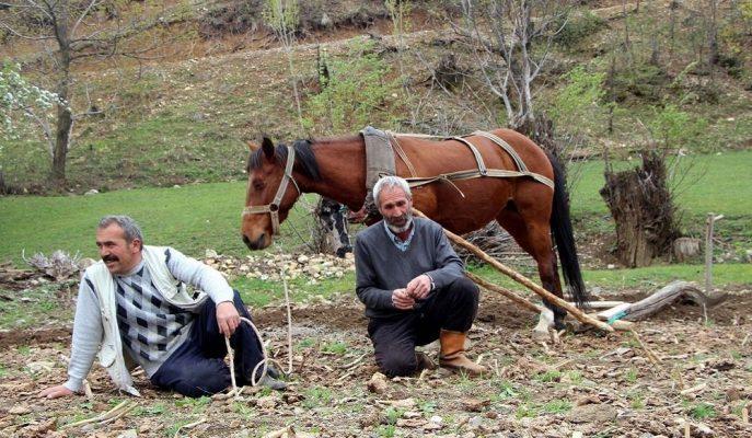 Agrievolution İş Barometresi Anketine Göre En Düşük Memnuniyet Türk Çiftçisinde