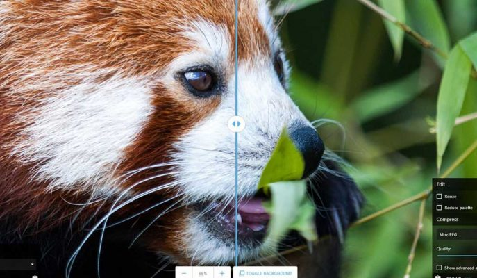 Google'dan Resimleri Tarayıcıda Optimize Edecek Yeni Hizmet: Squoosh
