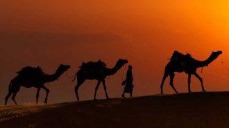 """IMF: """"Çoklu Riskler Orta Doğu ve Komşuları için Görümünü Gölgeliyor"""""""