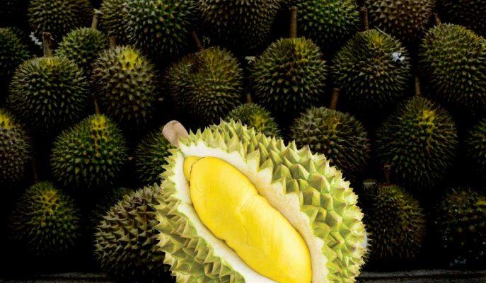 """Kötü Kokusuyla Meşhur """"Durian"""" Çinlilerin Talebiyle Malezya'yı İhya Edecek"""