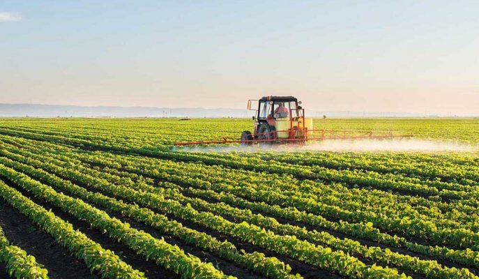 Tarım Ürünleri ÜFE'si Ekim Ayında Yüzde 0,88 Artış Gösterdi