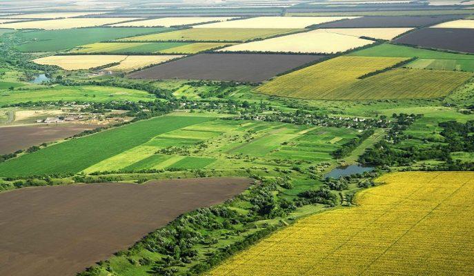 300 Ova Tarımsal Sit Alanı Kapsamında Korunacak