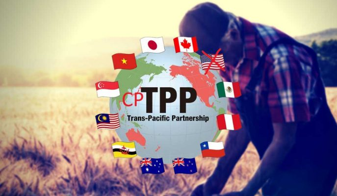 Yürürlüğe Giren Asya-Pasifik Anlaşması'nda Yer Almayan ABD'li Çiftçilerin Başı Dertte