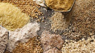 TMO'ya Sıfır Gümrükle 2,6 Milyon Tonluk Tahıl İthalatı Yetkisi Verildi
