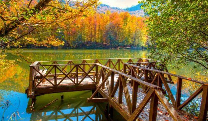 Turizm Gelirleri Dördüncü Çeyrekte 6,5 Milyar Dolar Oldu