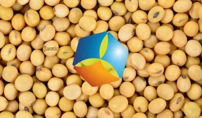 Çinli COFCO ABD'den Milyon Tonluk Soya Fasulyesi Satın Aldı