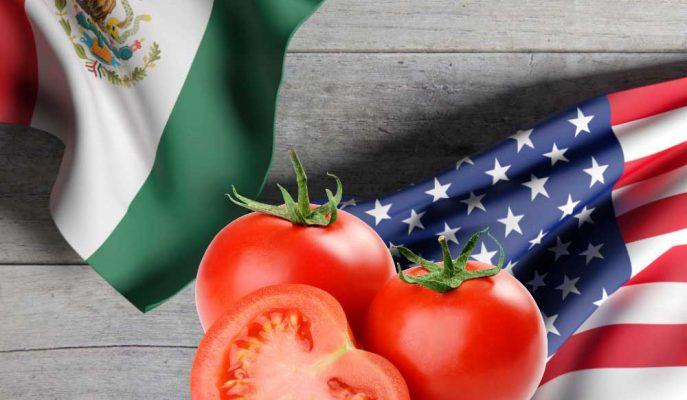 Domates Savaşı Yükseldi: ABD Meksika'ya Karşı Yeniden Anti-Damping Soruşturması Açıyor