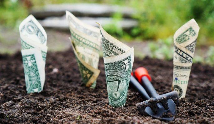Dolar/TL 5,32'ye Yaklaşırken Manulife'dan Yılın İlk Yarısı için Tahmin Geldi