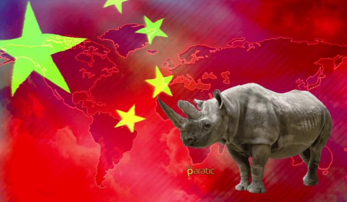 """Çin Finansal Sektörü için """"Gri Gergedan"""" Uyarısı!"""