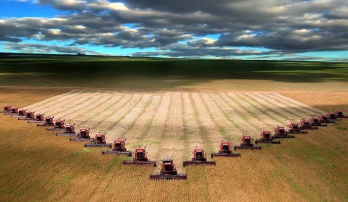 Cumhurbaşkanı Erdoğan: Mart'ta Çiftçiye 3,7 Milyar TL Destek Ödemesi Yapılacak