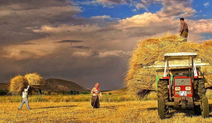 İGSAŞ Genel Müdürü, Bilinçsiz Tarımı Enflasyonun En Önemli Sebebi Olarak Gösterdi