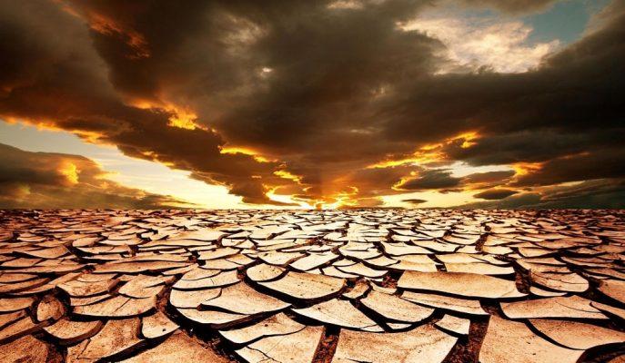 Dünya Çölleşme ile Mücadele Günü  Etkinliklerine 20 Ülkeden Katılım Sağlanacak
