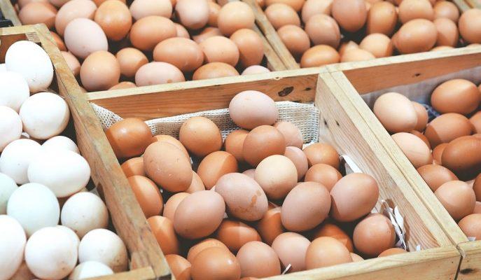 İç Piyasadaki Arz Fazlası Yumurtanın Koli Fiyatını 5 Lira Altına Düşürdü