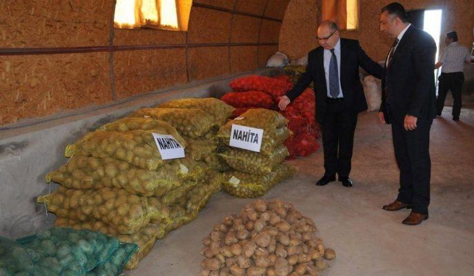 """Yerli Patates Türü """"Nahita""""nın Yabancı Tohumculuk Firmalarına Tanıtımı Yapıldı"""