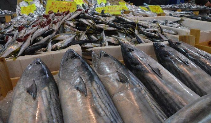 1 Eylül'de Bitecek Olan Av Yasağıyla Birlikte Balık Fiyatlarının Düşmesi Bekleniyor