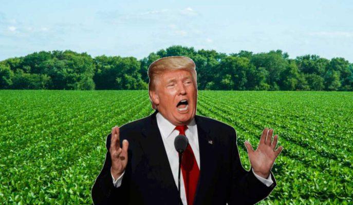 Çin Trump'ın Tarifelerine Misilleme Olarak ABD Tarım İthalatını Durdurdu