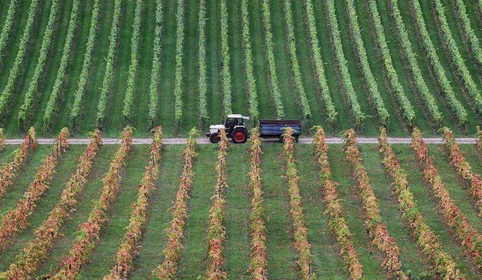 Gıda Krizi, Toprak Kullanımı ve Tarımsal Üretim Değişmediği Sürece Yaşanacak