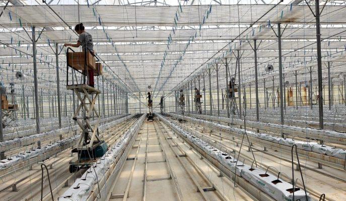 Jeotermal Elektrik Santrallerinden Türkiye Ekonomisine Yılda 1 Milyar Dolarlık Katkı!