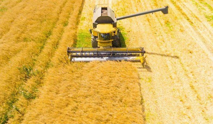 2020'de Tarım Sektörü için Ayrılan Bütçe 33,4 Milyar TL Olarak Belirlendi