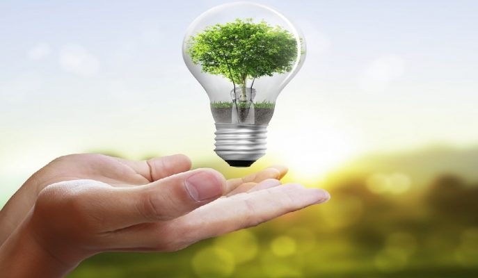 IEA, 2018'den İtibaren Enerji Harcama Tasarruflarının 600 Milyar Dolar Olduğunu Açıkladı