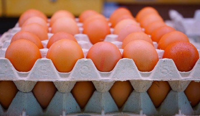 Afyonlu Yumurta Üreticileri İhracatta Yeni Pazar Arayışında Arap Ülkelerine Yöneldi
