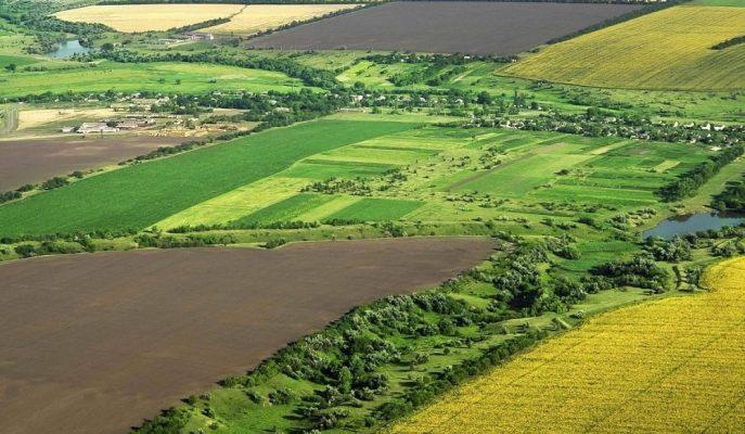"""Bakan Pakdemirli: """"Arazi Dağıtım Projeleri Kapsamında 1 Milyonu Aşkın Çiftçi Topraklandırıldı"""""""